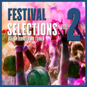 Festival Selections Vol 2 (Selection of EDM Tunes) (2016)