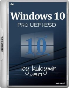Windows 10 Pro x64 by kuloymin v.6.0 UEFI-ESD (RUS/2017)