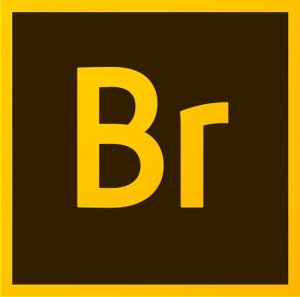 Adobe Bridge CC 2017 7.0.0.93 RePack by KpoJIuK (09.03.2017)